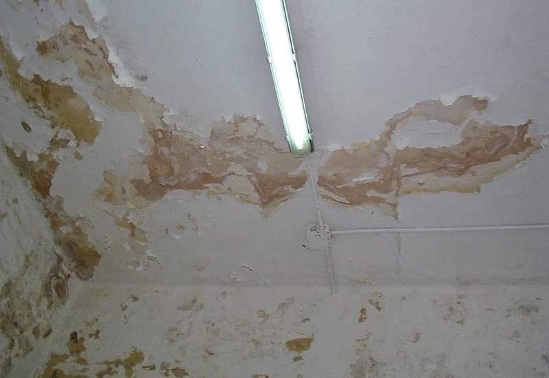 reparación de humedades Granada