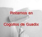 pintor_cogollos-de-guadix.jpg